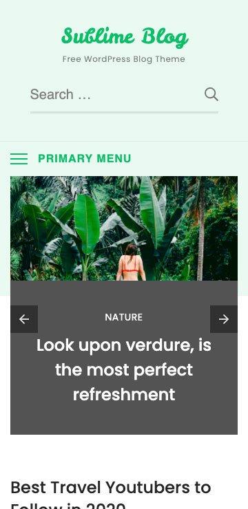 Free Wordpress Theme - Sublime Blog